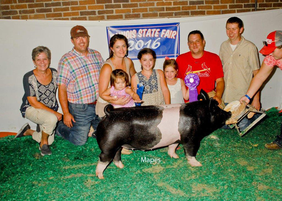 Champion Crossbred Barrow, 2016 Illinois State Fair Open Show - Ella & Claire Bobell.png